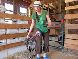 Woodstock Farm Animal Sanctuary, Day 1 | Red-Handled Scissors