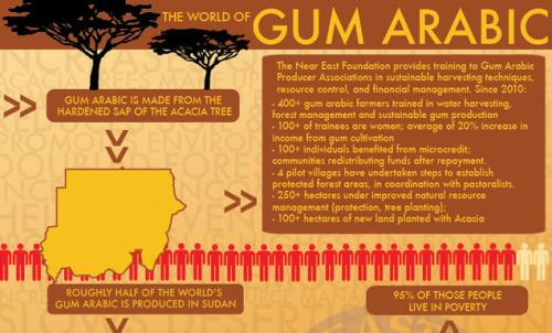 Gum Arabic Sudan Sebagai Bahan Baku Industri