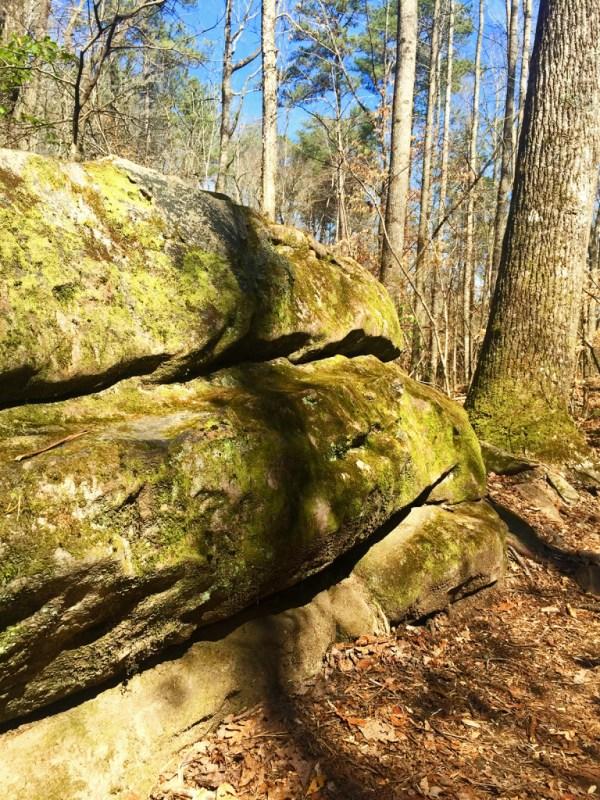 Take a Walk at Moss Rock Preserve Birmingham Alabama