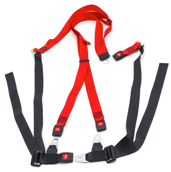 2 Point Static Harness Adult Size