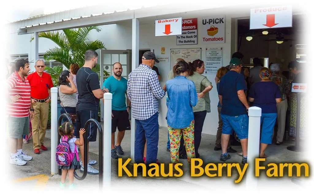 Knaus Berry Farm