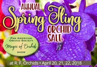 Annual Spring Fling Orchid Sale and Magic Of Orchids show at RF