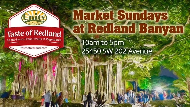 Market Sundays at Redland Banyan