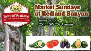 Farm Stand and Locavore Kitchen at Redland Banyan