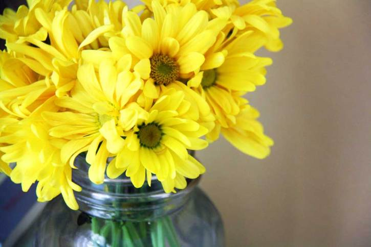 Yellow daises in a mason jar | redleafstyle.com