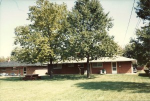 The trees in 1988