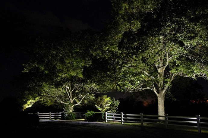 Residential - tree canopy lighting