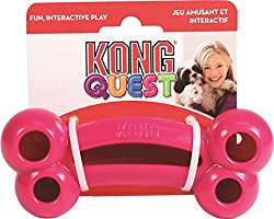 Kong Quest Bone Treat Dog Toy Review