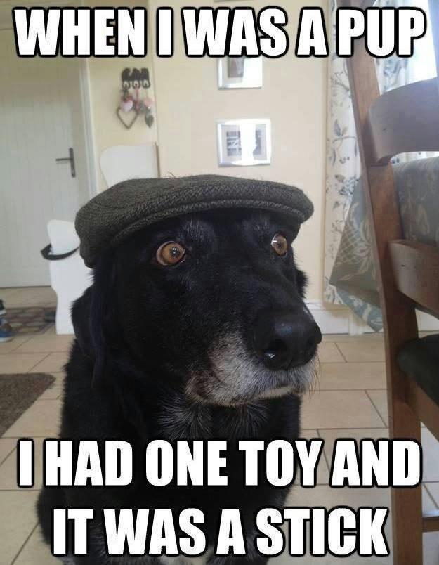 olddogstick