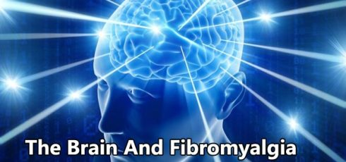 The Brain And Fibromyalgia