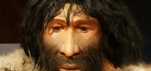 If Neanderthals were still around, would we put them in zoos?