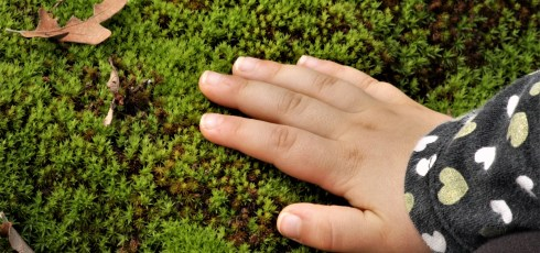 Does Earthing Actually Work?