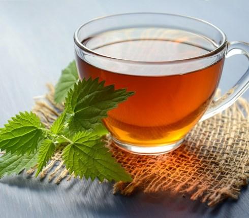 Peppermint Tea Benefits: 9 Reasons to Drink More Tea