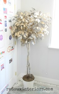 Dumpster Makeover Ficus Tree Trashy Tuesday