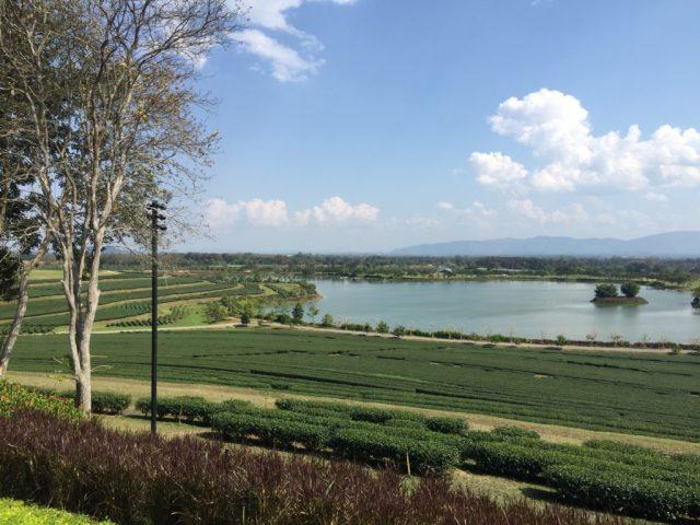 singha-park-view