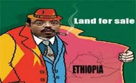 Ethiopian land grab