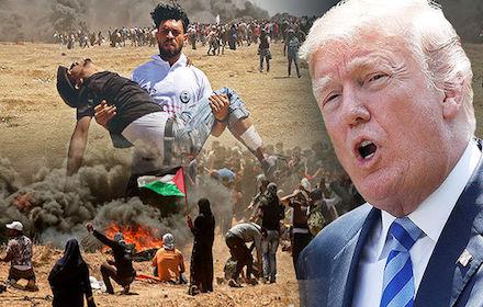 Massacre in Gaza 2018