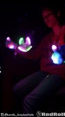 Lights_1