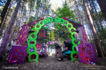 Electric Forest Friday Photo 25