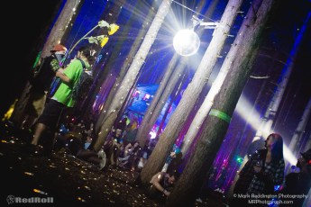 Electric Forest Sunday Photo 60