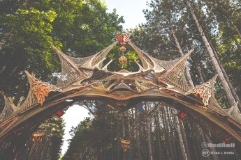 Electric Forest Weekend 1 Saturday Photo 38