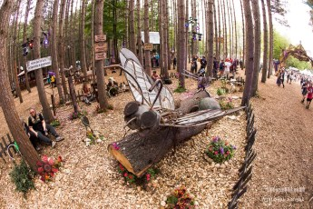 Electric Forest Weekend 1 Sunday Photo 067