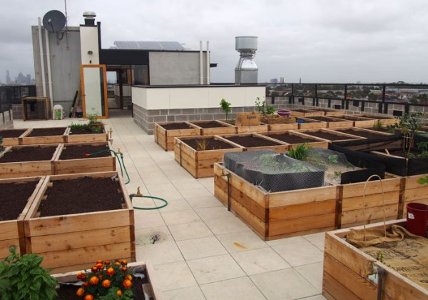 The private garden beds. 2 per apartment. Most have started vegetable gardens.