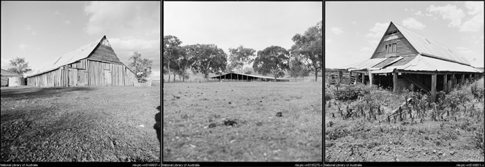 A series of 3 Sheep or Wool Sheds photographed by Wes Stacey in regional NSW