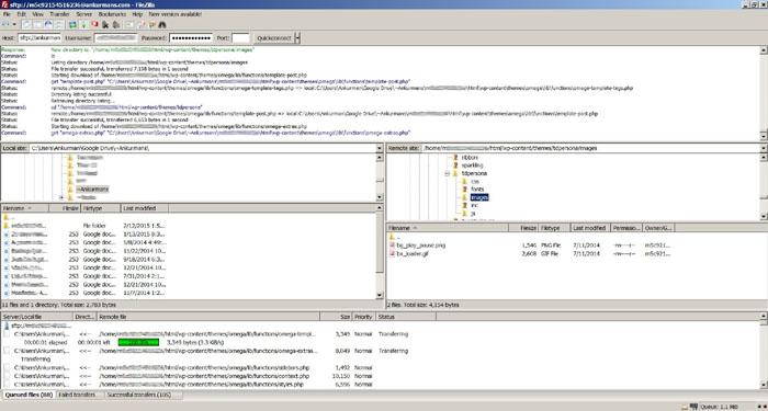 Taking bakcup of wordpress site using FileZilla