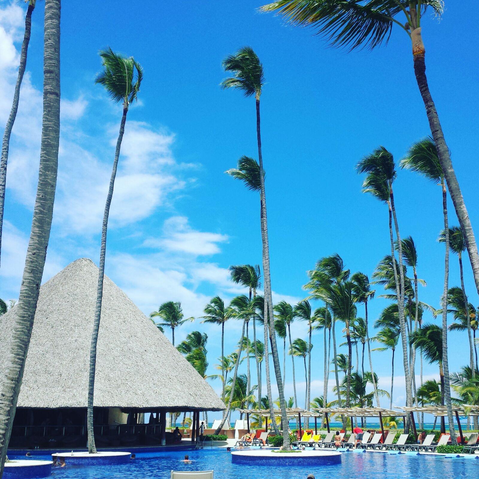 Palmen säumen den Strand und das komplete Areal des Barceló Deluxe Resorts.