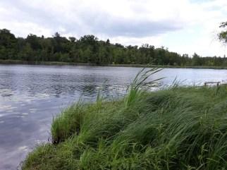 Idyllische Umgebung - eine tolle Location für das Camp.