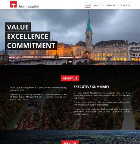 Team Capital Consultant