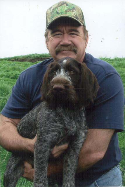 Deutsch Drahthaar Puppies V Roten Stock Baton Rouge