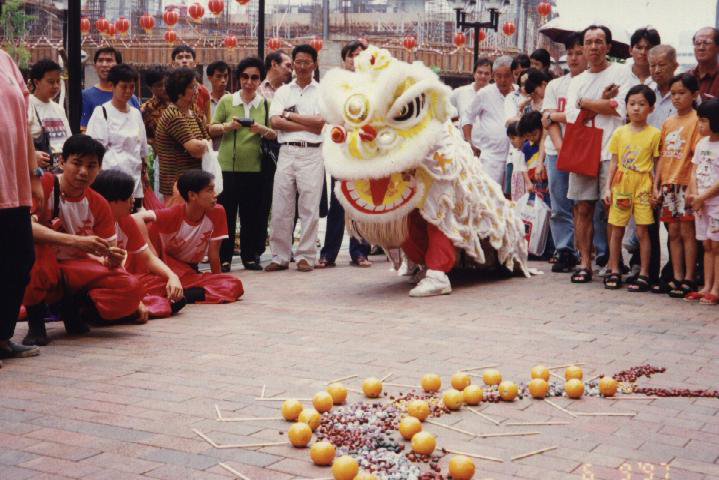 Tian Eng Dragon and Lion Dance Centre