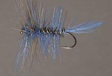 Blue damsel dry fly
