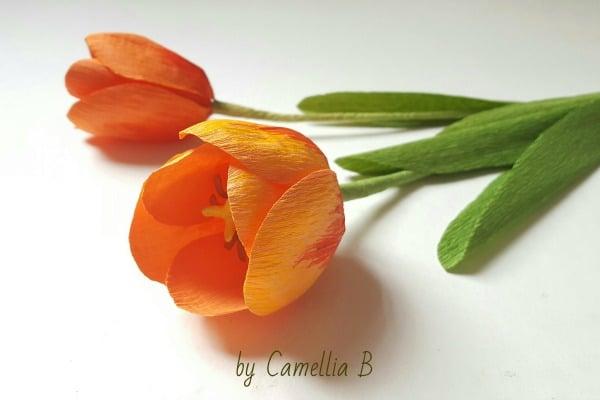 Paper Tulip Craft Red Ted Art