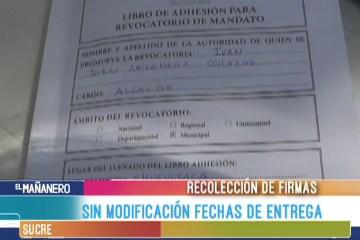 SIN MODIFICACIÓN LAS FECHAS DE ENTREGA DE LOS LIBROS FIRMADOS PARA REVOCATORIA DE MANDATO