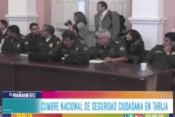 CUMBRE NACIONAL DE SEGURIDAD CIUDADANA EN TARIJA