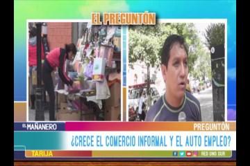 EL PREGUNTÓN: COMERCIO INFORMAL Y EL AUTO EMPLEO