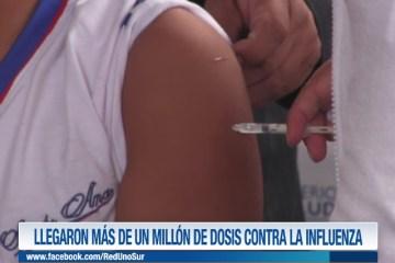 LLEGARON MÁS DE UN MILLÓN DE VACUNAS CONTRA LA INFLUENZA