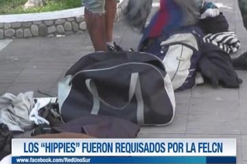 """LOS """"HIPPIES"""" FUERON REQUISADOS POR LA FELCN"""