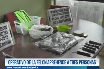 OPERATIVO DE LA FELCN APREHENDE A TRES PERSONAS