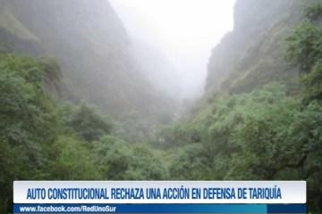 AUTO CONSTITUCIONAL RECHAZA UNA ACCIÓN EN DEFENSA DE TARIQUIA