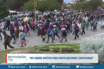 """""""NO HABRÍA MOTIVO PARA MOVILIZACIÓN DE CAMPESINOS"""""""