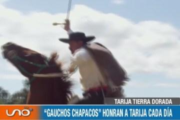 """""""CUNCHOS CHAPACOS"""" HONRAN A TARIJA CADA DÍA"""