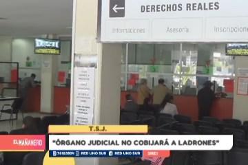 """""""EL ÓRGANO JUDICIAL NO COBIJARÁ A LADRONES"""""""