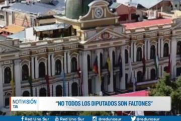 """""""NO TODOS LOS PARLAMENTARIOS SON FALTONES"""""""