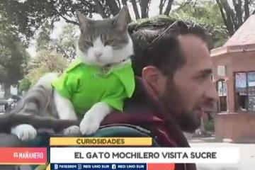 EL GATO MOCHILERO VISITA SUCRE