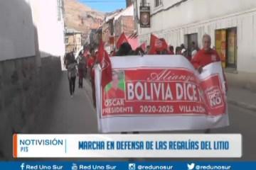 MARCHA EN DEFENSA DE LAS REGALÍAS DEL LITIO