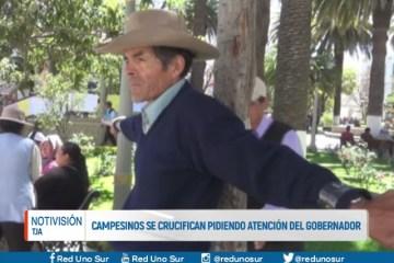 CAMPESINOS SE CRUCIFICAN PIDIENDO ATENCIÓN DEL GOBIERNO